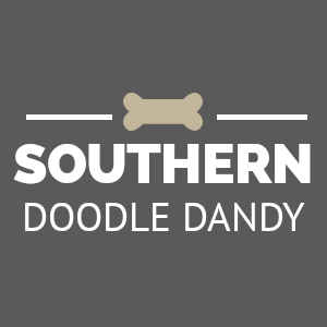 Southern Doodle Dandy