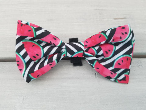 Watermelons Bow Tie