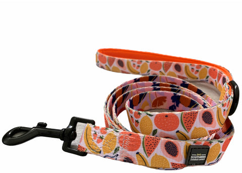 Fun N' Fruity Leash