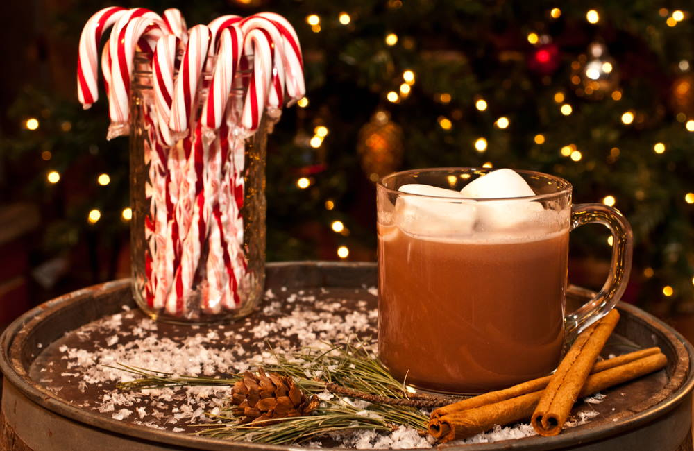 How to Get into The Holiday Spirit | 5 Fun Ways to Enjoy the Holidays