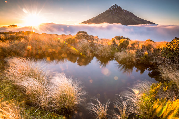 Golden Mount Taranaki Sunrise