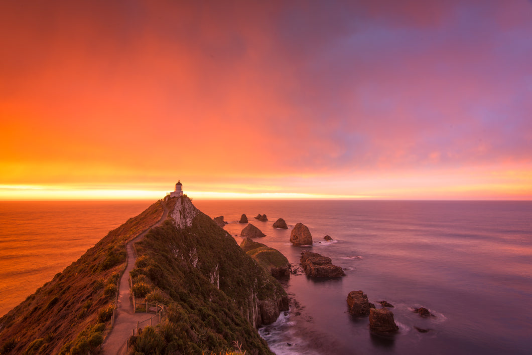 Nugget Point Intense Sunrise