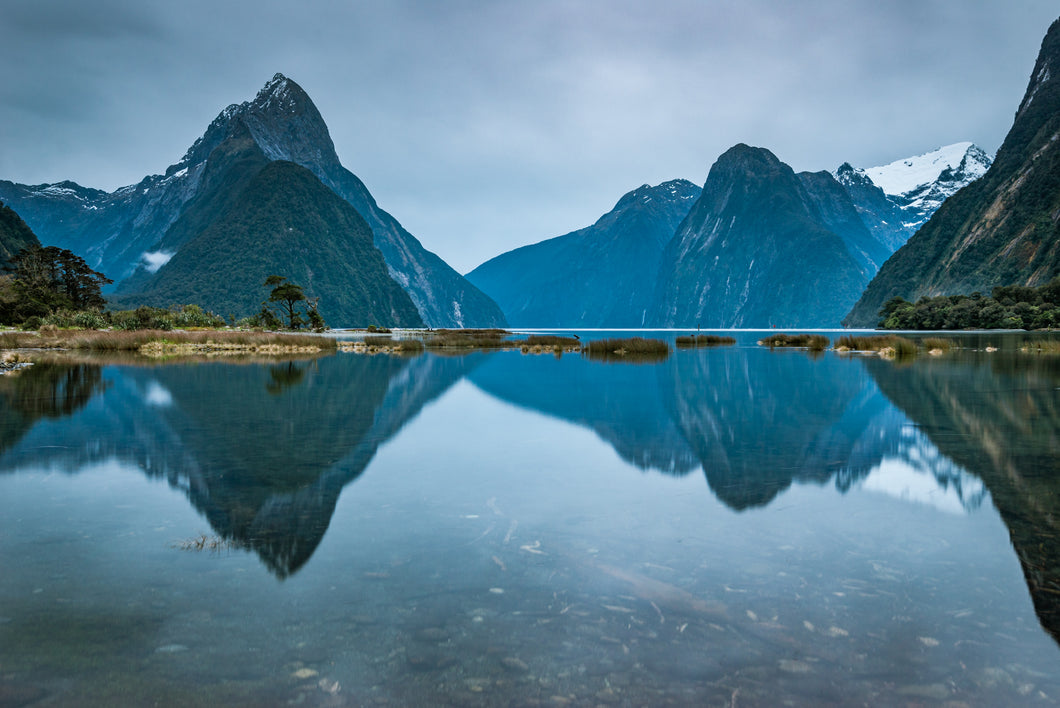 Milford Sound Morning Mood