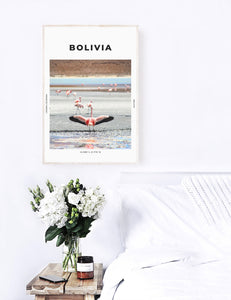 Bolivia 'Free As A Flamingo' Print