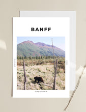 Load image into Gallery viewer, Banff 'Bear of Canada' Print