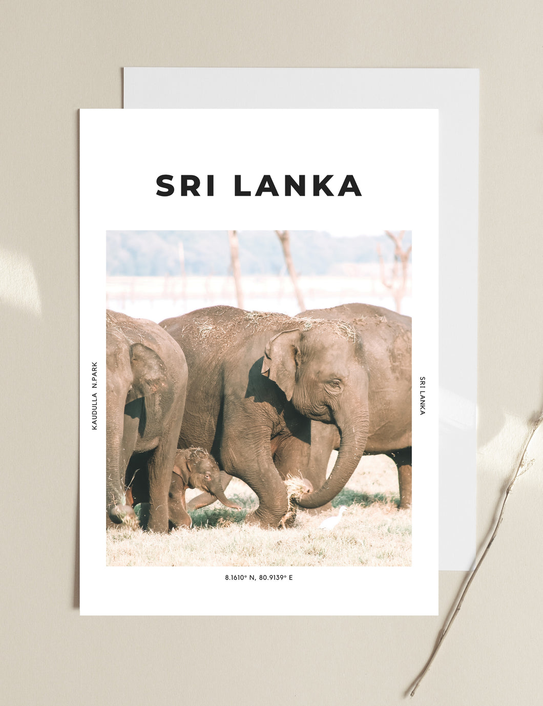 Sri Lanka 'Dream Big' Print