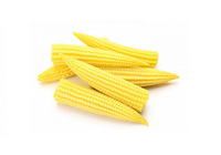 Baby-corn (Price per 200gms) - FAST AND FRESH  GLOBAL LLP