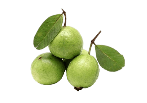 Guava Fruit Small (Price per 500gms)