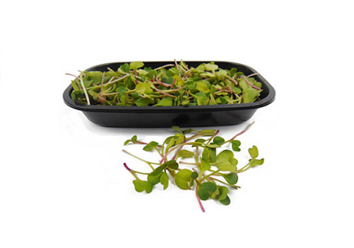 Micro Greens Red Rose Radish (Price per pkt Approx. 35gms)