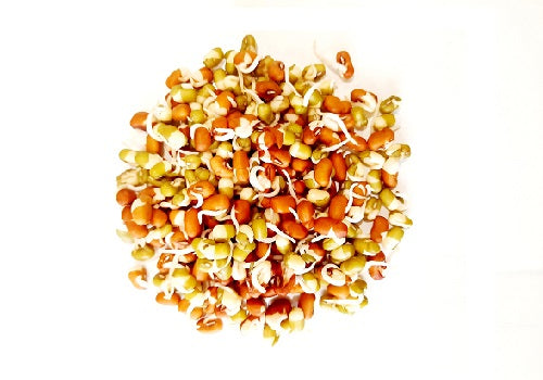 Sprouts - Mix Variety (Price Per 200 gms) - FAST AND FRESH  GLOBAL LLP