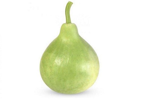 Round Lauki/Bottle gourd Round (Price per 500gms) - FAST AND FRESH  GLOBAL LLP