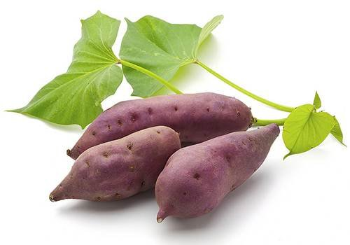 Sweet Potato (Price per 500 gms) - FAST AND FRESH  GLOBAL LLP