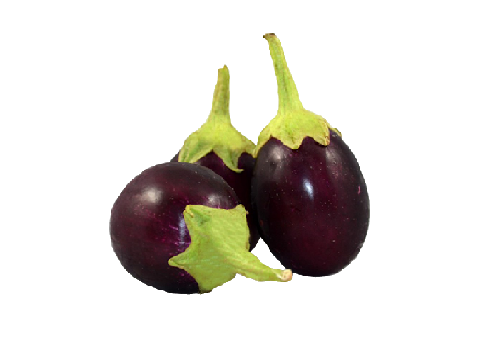 Brinjal Round (Price per 500 gms) - FAST AND FRESH  GLOBAL LLP