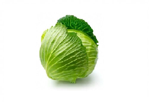 Cabbage Green (Price per Pcs) - FAST AND FRESH  GLOBAL LLP