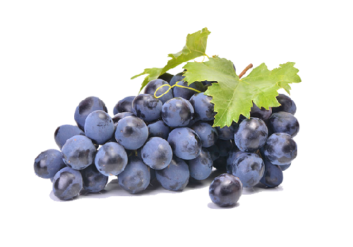 Grapes Black (Price per 500 gms) - FAST AND FRESH  GLOBAL LLP