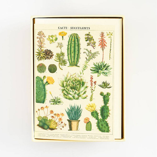 Cacti and Succulents Boxed Notecard Set