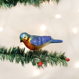 Western Bluebird with Clip Ornament