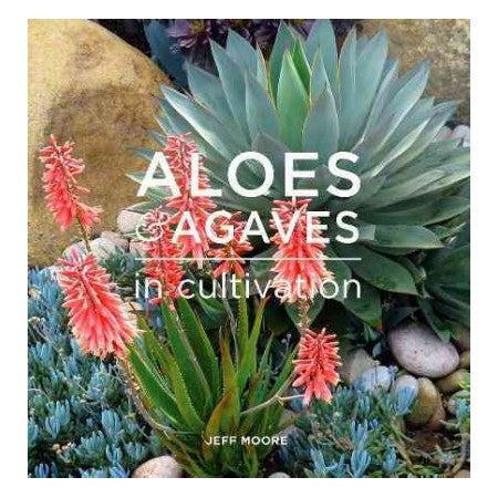 Aloes & Agaves