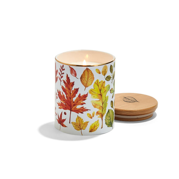 Harvest Bounty Clove and Chestnut Candle