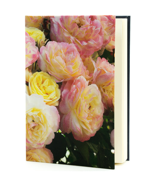 'Huntington's 100th' Rose Journal