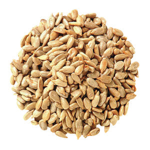 Sunflower Seeds Shelled Dry Roasted No Salt 25.00Lb Case