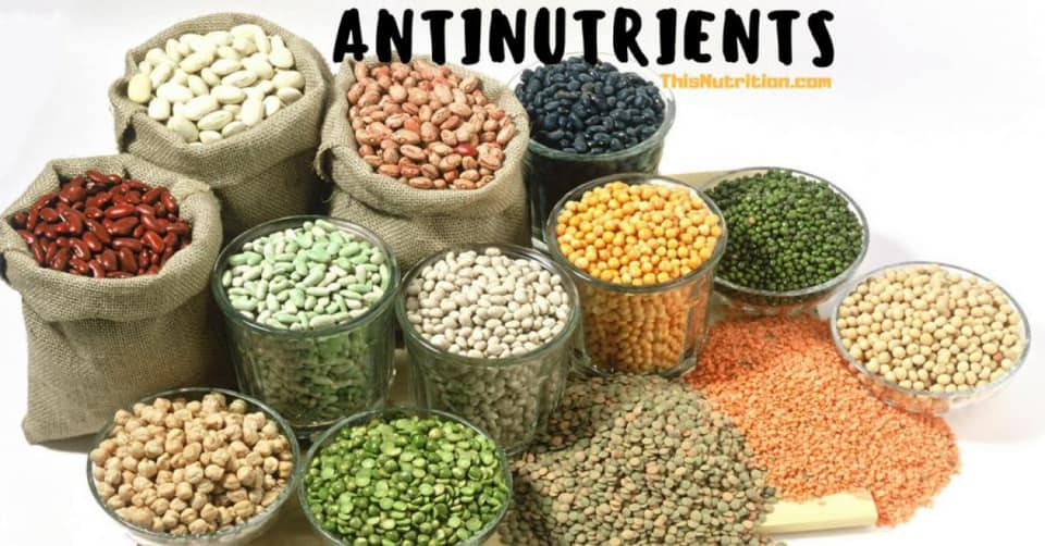 Antinutrients - What Are They and Should You Fear Them?