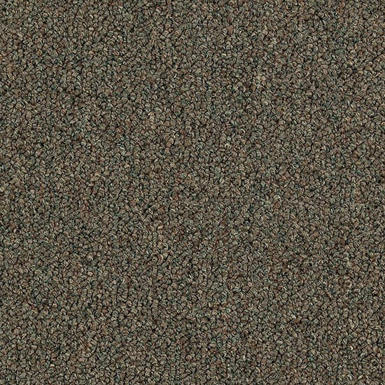 TrafficMASTER Top Rail 26 - Color Arugula Loop 12 ft. Carpet