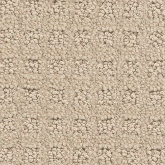 TrafficMASTER Piroette - Color Baltic Pattern 12 ft. Carpet