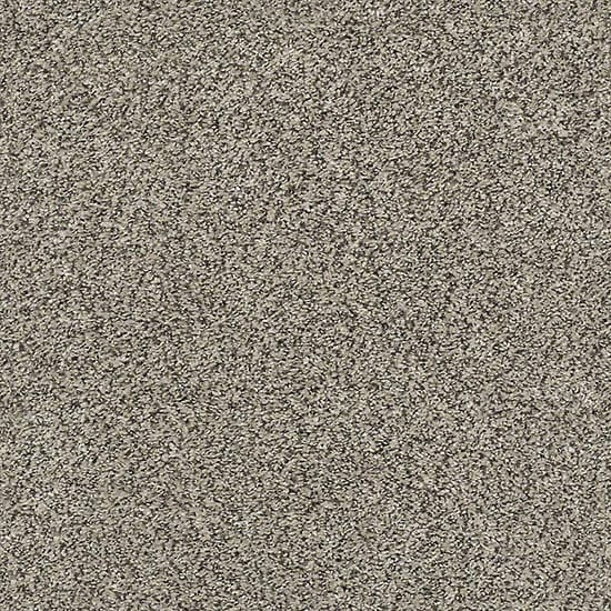 Home Decorators Collection Tradeshow I - Color Bedrock Texture 12 ft. Carpet