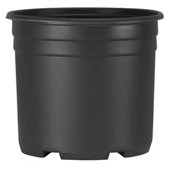 3 Gal. Black Resin Thermoformed Nursery Pot