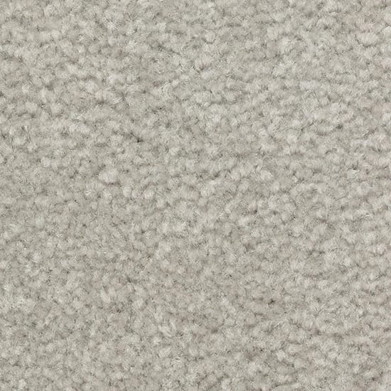 LifeProof Best Wishes I - Color Dolphin Texture 12 ft. Carpet