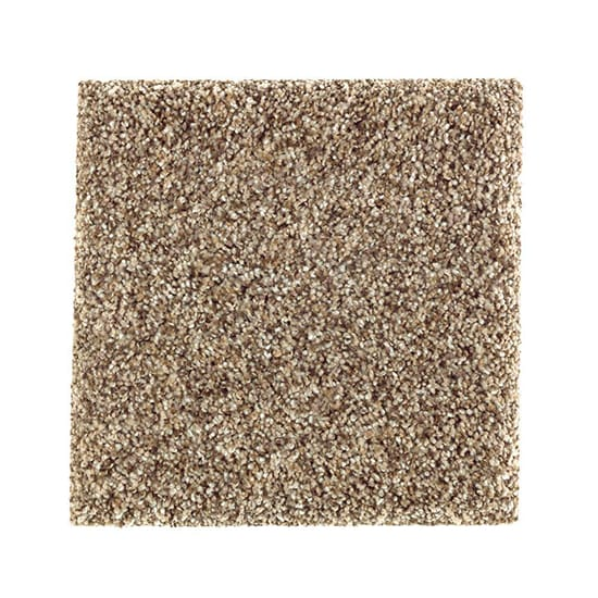 PetProof Sachet I - Color Embraceable Texture 12 ft. Carpet