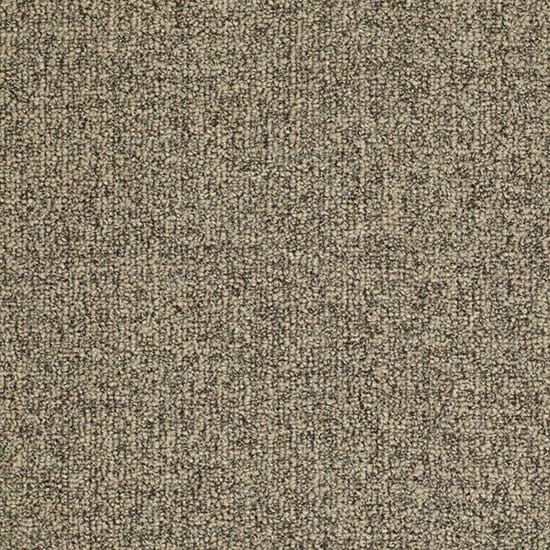 TrafficMASTER Burana - Color Fortune Cookie 12 ft. Carpet