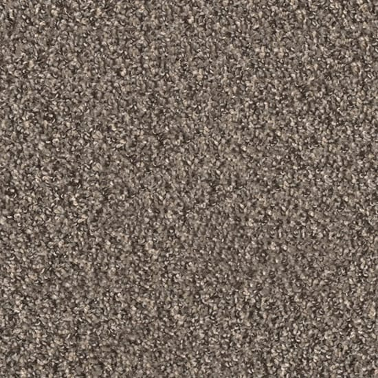 TrafficMASTER Reed Piper - Color Lapwing Texture 12 ft. Carpet