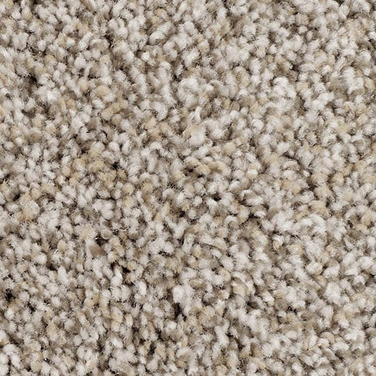 Home Decorators Collection Rally Car I-Color Modern Textured 12 ft. Carpet
