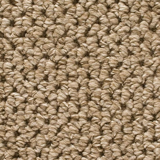 Home Decorators Collection Sutton - Color Mount Orford Loop 12 ft. Carpet