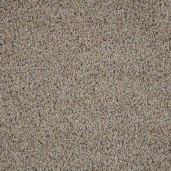 PetProof Collinger I-Color Oxford Textured 12 ft. Carpet