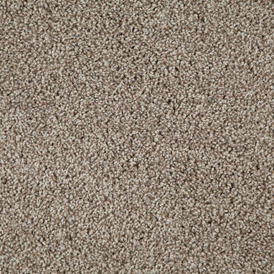 TrafficMASTER Americana - Color Sedona Texture 12 ft. Carpet