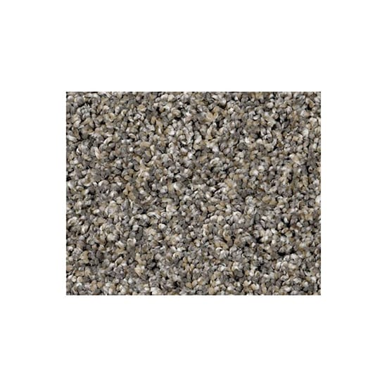 Home Decorators Collection Wholehearted III - Color Shark Fin Twist 12 ft. Carpet