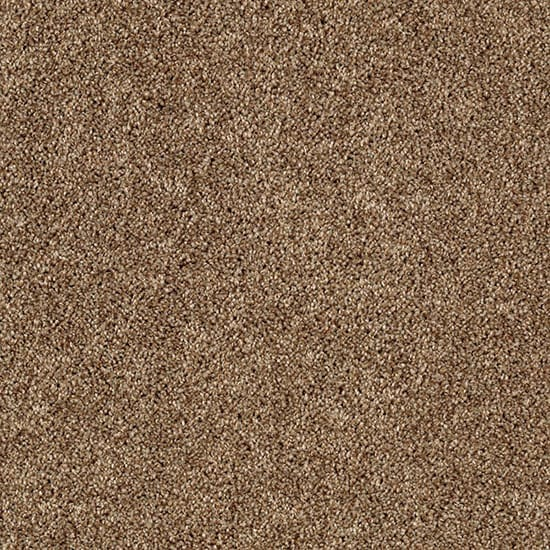 LifeProof Gorrono Ranch I - Color Utopia Texture 12 ft. Carpet