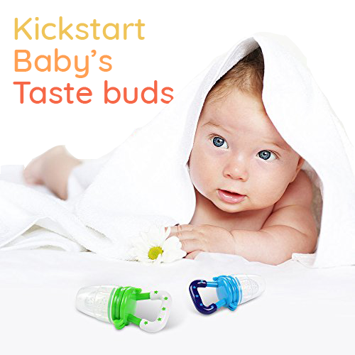 Kickstart Baby's Taste buds with Food Pacifier