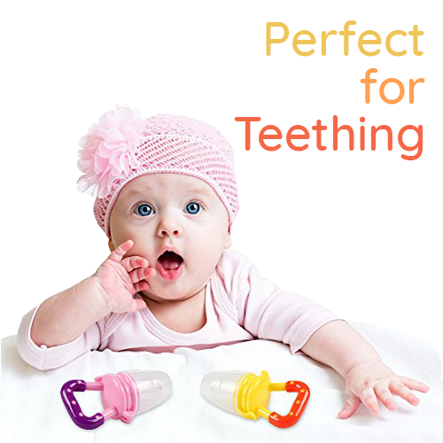 Perfect for Teething Food Pacifier