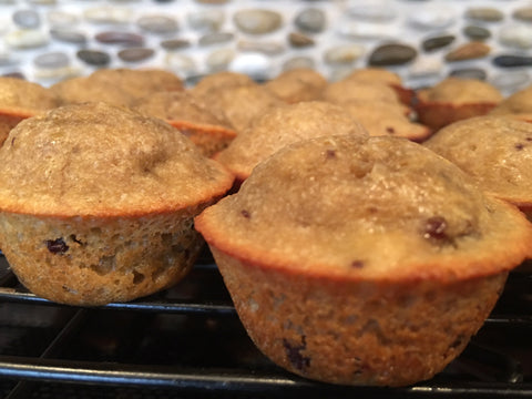 Pancake waffle recipes thinkve high protein low carb delicious muffins made from our pancake waffle mix ccuart Image collections