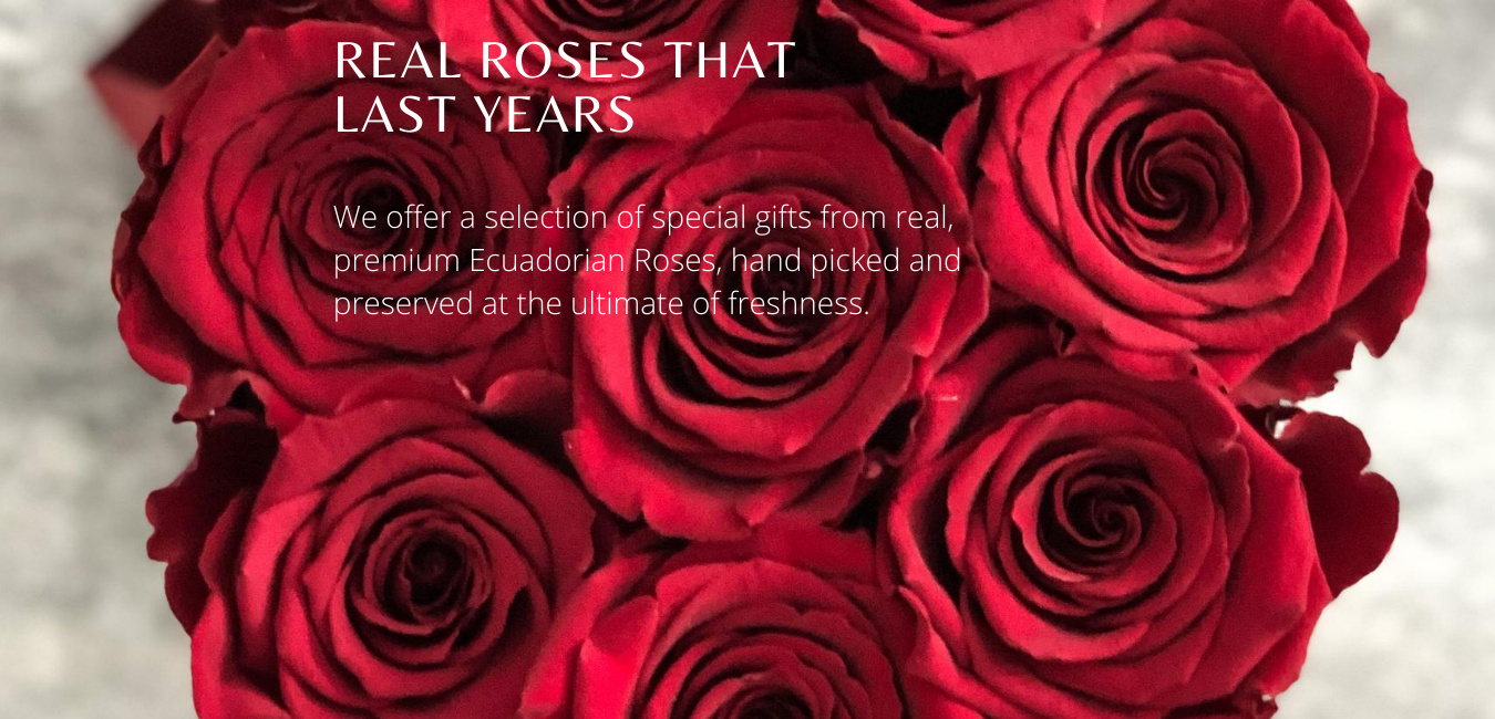 real roses that last years, forever roses, eternity roses, infinity flowers, flowers boutique, preserved roses, preserved flowers, preserved roses Cyprus, unique gifts, luxury gifts, plexi glass box, rose box, acrylic rose box