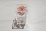 infinity roses, eternity rose, preserved roses, infinity box, luxury box, plexi glass, acrylic box, preserved flowers Cyprus