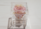 infinity roses, preserved roses, infinity box, luxury box, plexi glass, acrylic box, preserved flowers Cyprus