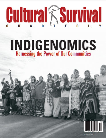CSQ 44-4: Indigenomics: Harnessing the Power of Our Communities