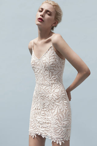 Shop Goldie Dress Goldie Song Bird Ivory Lace Fitted Dress Second Thread