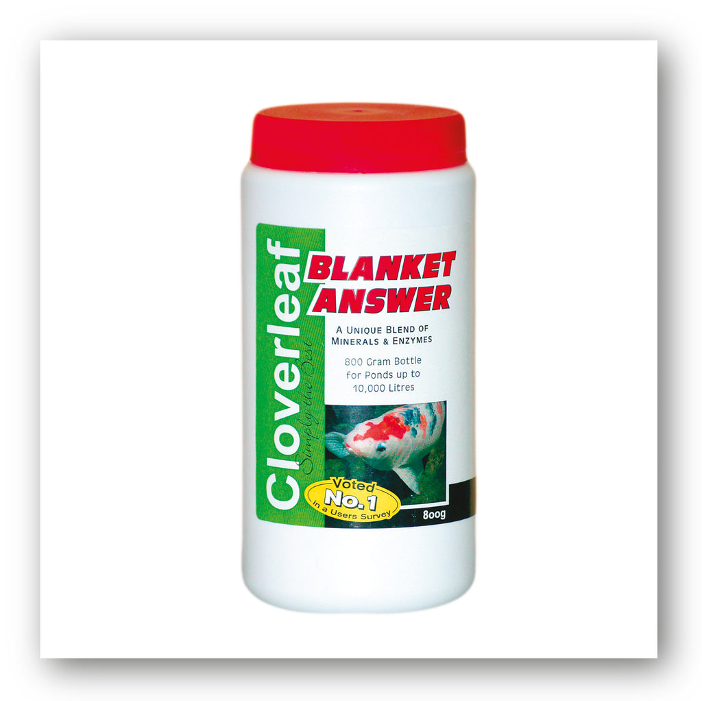 Cloverleaf Blanket Answer