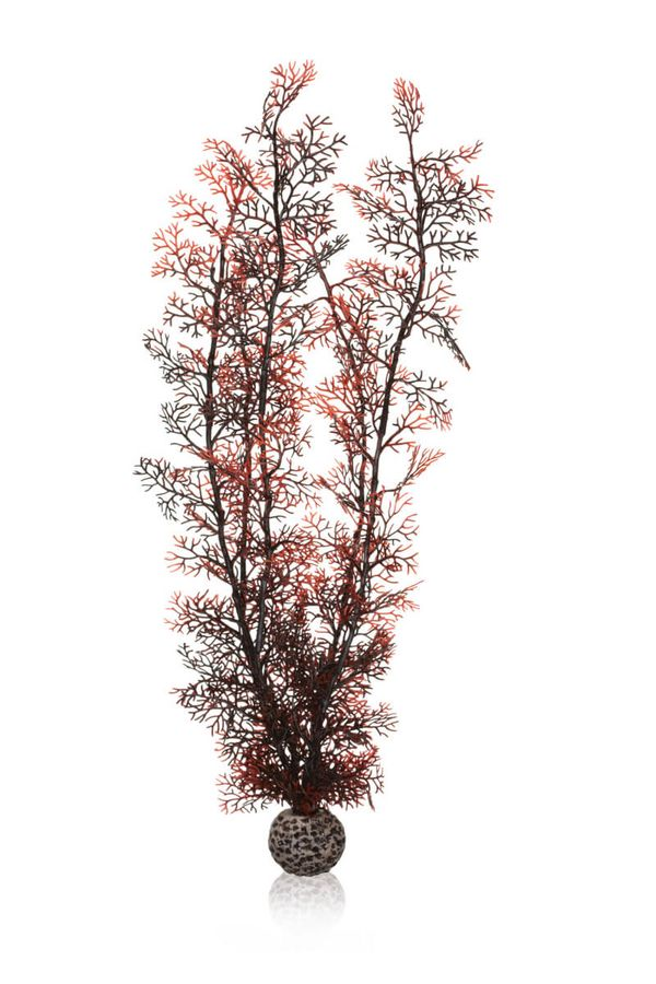 biOrb Sea Fan Plant Aquarium Decoration Crimson (All Sizes)